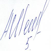 автограф Шешукова